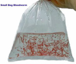 Bag of Bloodworm